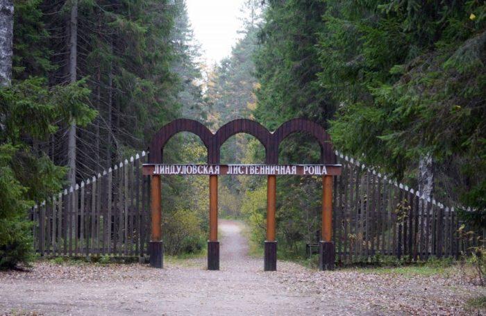 lindulovskaya-roshcha-700x455
