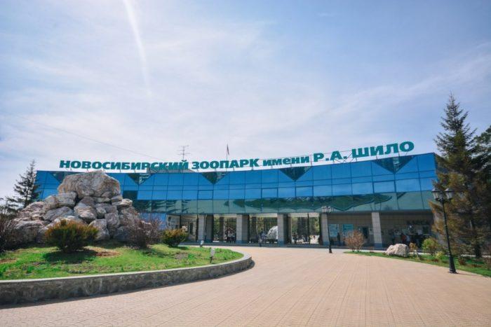 novosibirskiy-zoopark-im-shilo-700x467