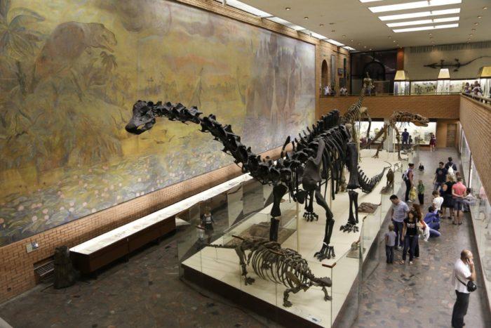 paleontologicheskiy-muzey-700x467