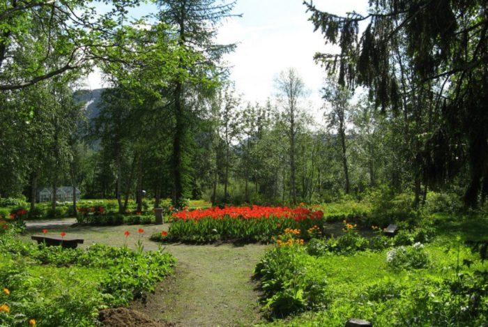 polyarno-alpiyskiy-botanicheskiy-sad-institut-700x469