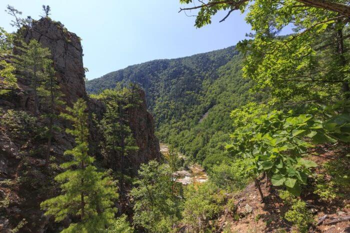 nacionalnyj-park-zov-tigra-700x467