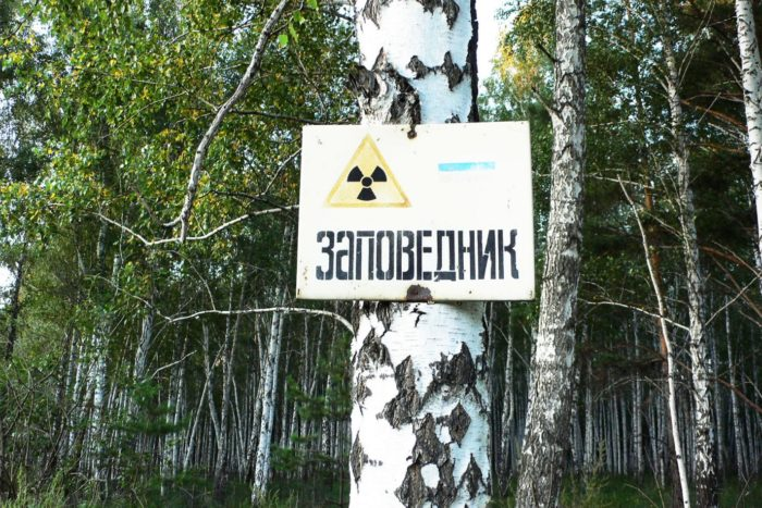 vostochno-uralskij-zapovednik-700x467