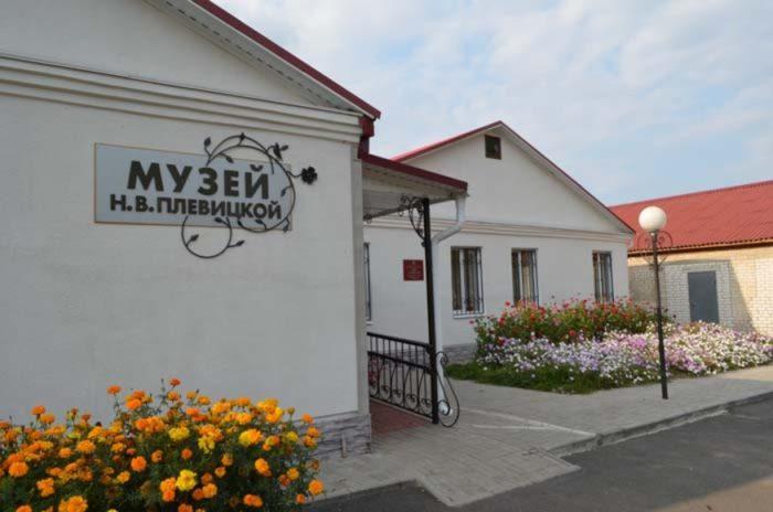 muzej-plevickoj-700x464