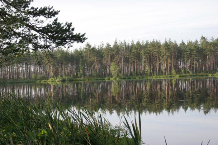 bolshoe-i-maloe-tugolyanskie-ozera-700x466