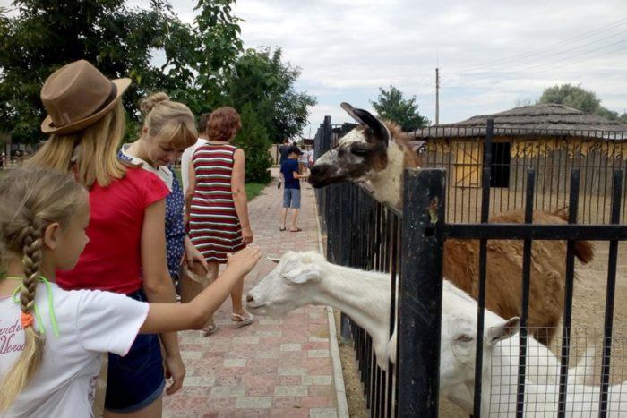 ivanchugskij-zoopark-baba-frosya-700x467