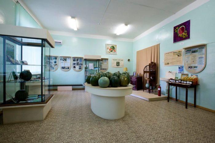 muzej-rossijskij-arbuz-700x466