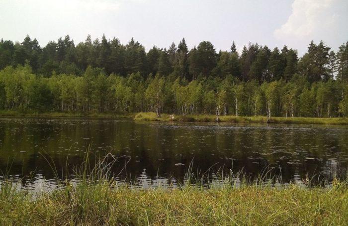 zvenigorodskaya-biostanciya-mgu-i-karer-sima-700x455
