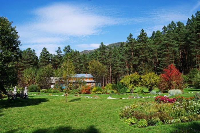 gorno-altajskij-botanicheskij-sad-700x465