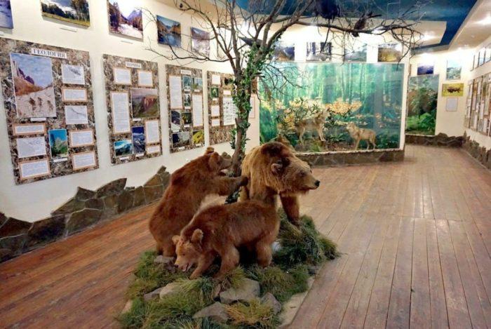 muzej-prirody-kavkazskogo-zapovednika-700x469