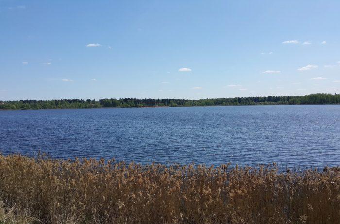 krugloe-dmitrovskij-rajon-700x462
