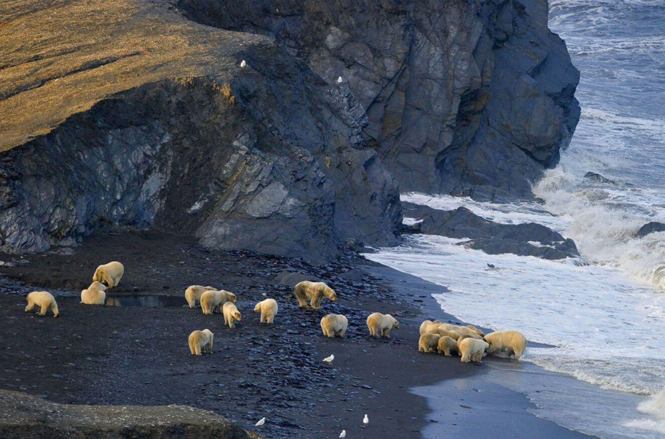 Чукотка Природа рельеф климат и идеи для туристов -