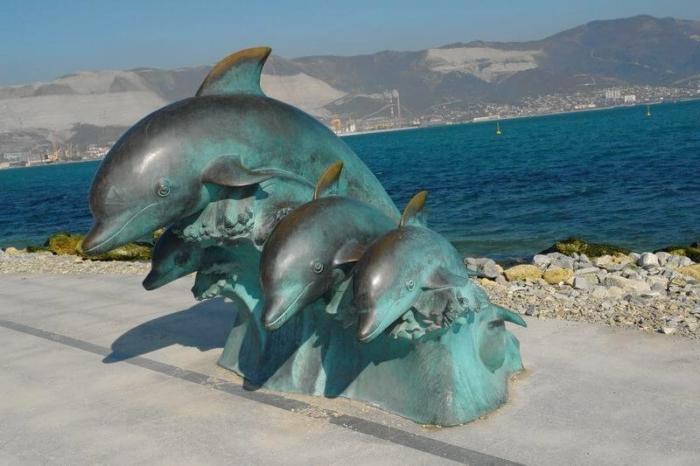 delfiny-na-volne-700x466