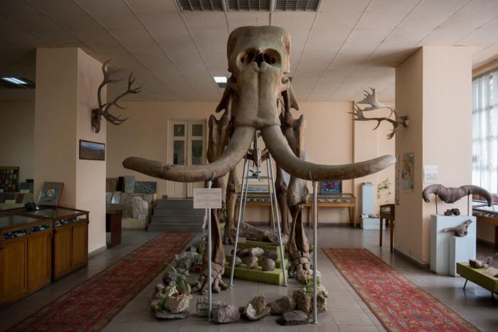 geologicheskij-muzej-armenii-700x467