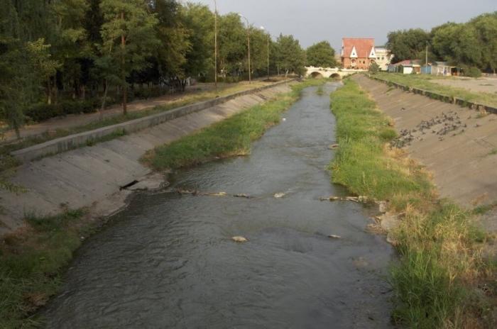 mokraya-bui-vola-700x464