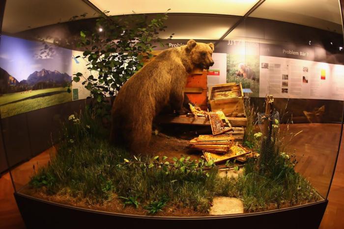 muzej-prirody-i-cheloveka-700x467