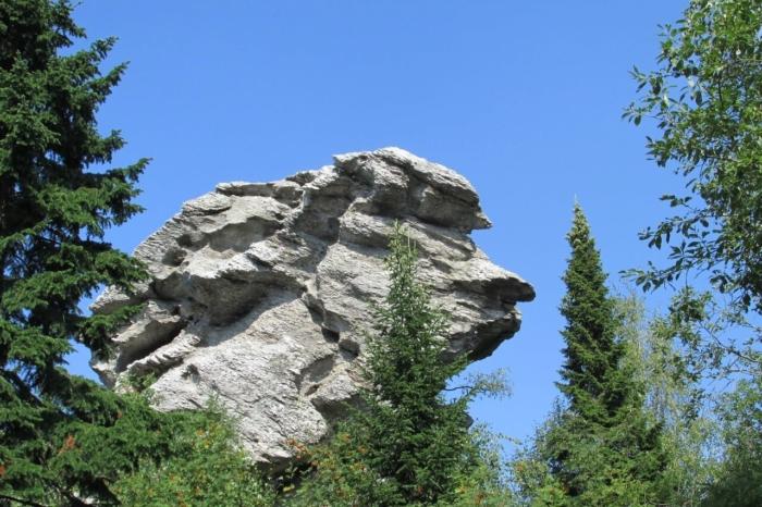 skala-starik-kamen-700x466