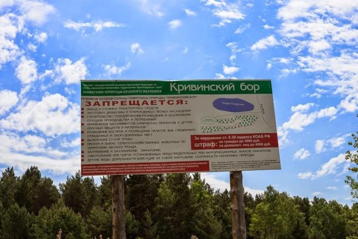 krivinskiy-bor-700x467