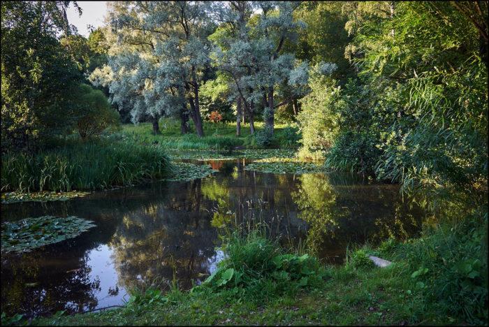 botanicheskiy-sad-ltu--700x468