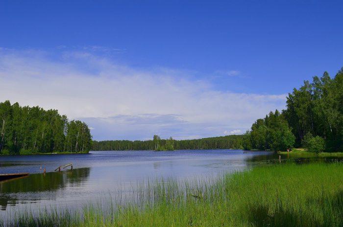 park-osinovaya-roscha-700x464