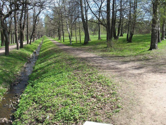 park-otdelnyy-700x525