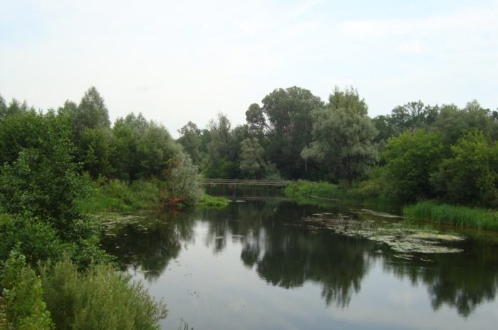 voronezh-700x464