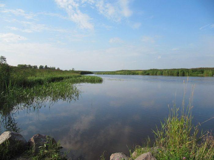 zakaznik-yuntolovskiy-700x525