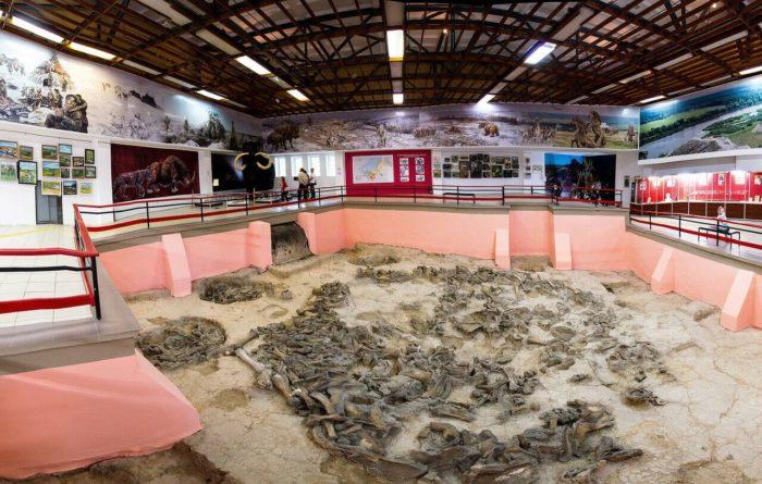arheologicheskiy-muzey-zapovednik-kostyonki--700x445