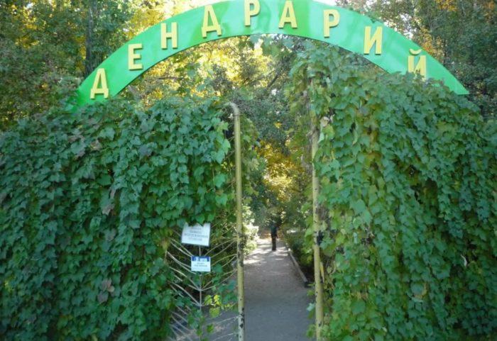 dendrariy-krasnoarmeyskogo-rayona-700x481