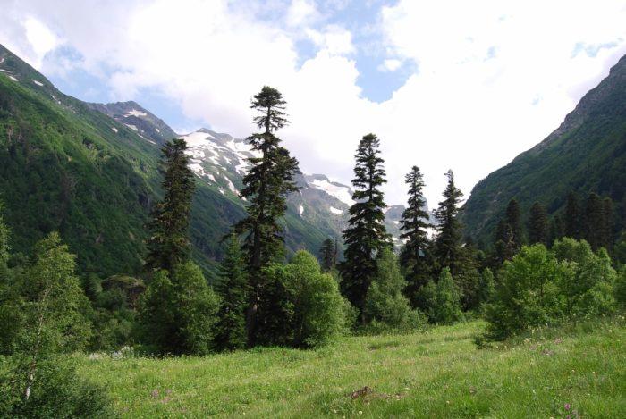 dolina-reki-kizgych-700x469
