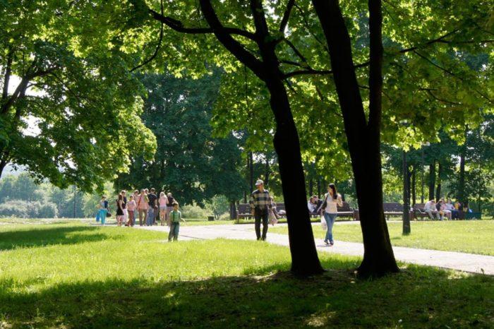 park-lipki-700x466