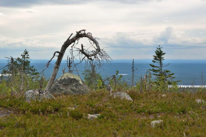 gora-vottovaara-700x466