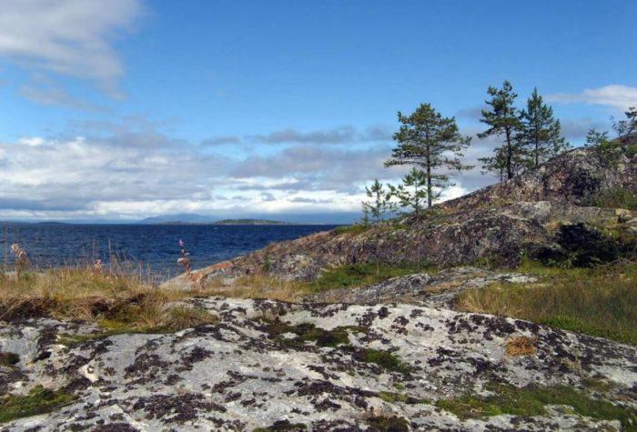 granitoidy-ostrova-mikkov-700x475