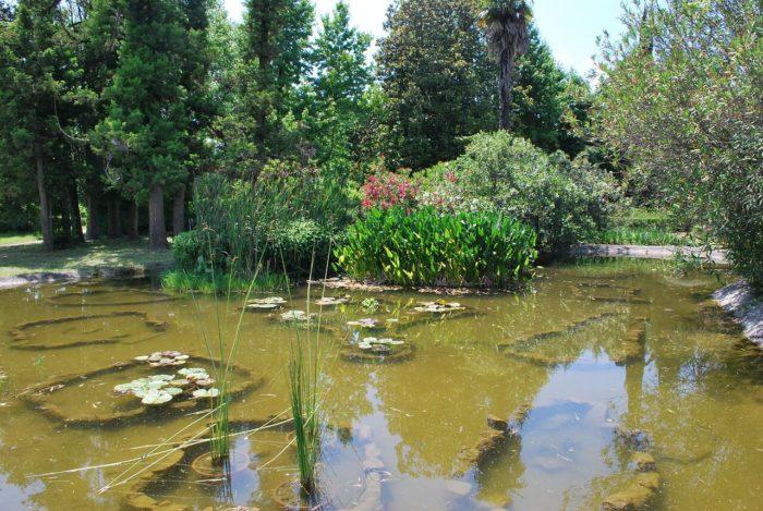 park-yuzhnye-kultury-700x469