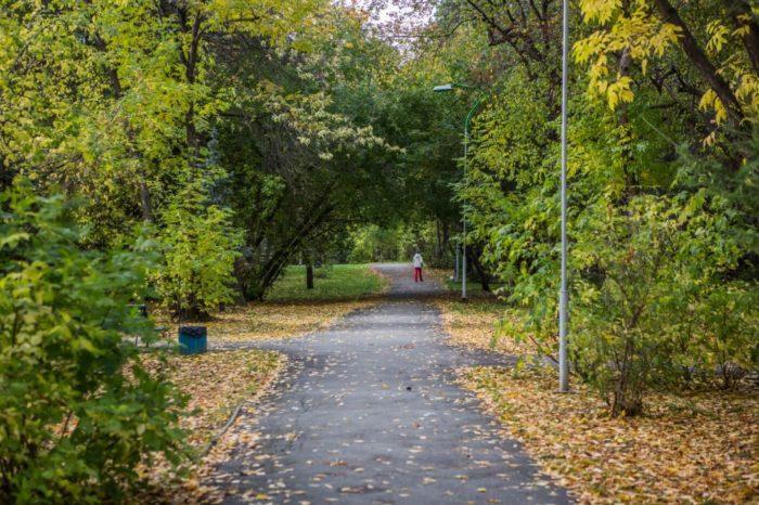 park-zelyonaya-roscha-700x466