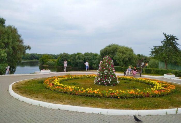 skver-blyudechko-700x475