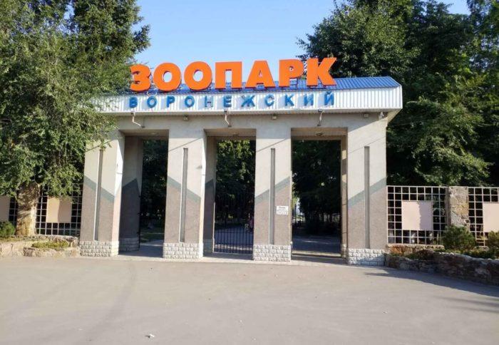 voronezhskiy-zoopark-imeni-a.-s.-popova-700x484
