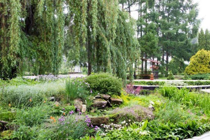 botanicheskiy-sad-institut-pgtu-700x467