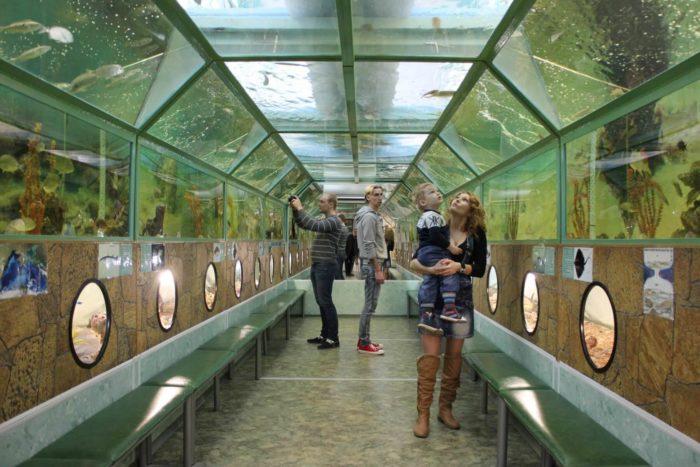 morskoy-akvarium-batiskaf-700x467