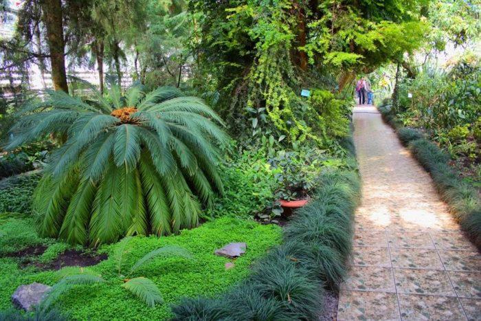 yuzhno-uralskiy-botanicheskiy-sad-institut-700x467