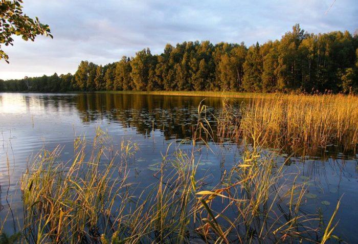 natsionalnyy-park-smolenskoe-poozere-700x477