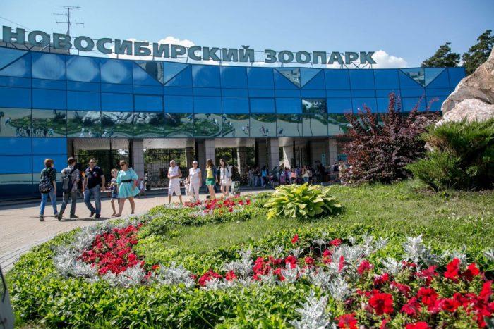 novosibirskiy-zoopark-700x467