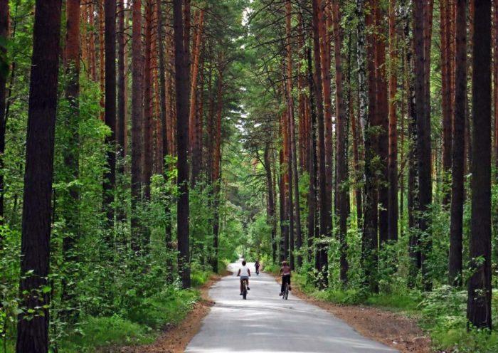 zaeltsovskiy-park-700x496
