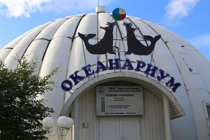 Murmanskiy-okeanarium-700x466