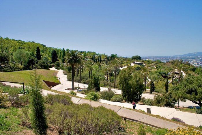 Botanicheskiy-sad-Barselony-700x467