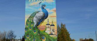 Граффити «Гигантский павлин»