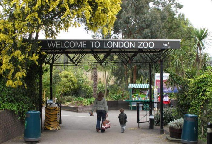 Londonskiy-zoopark-700x477