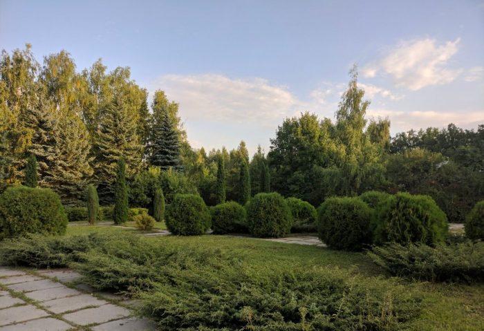 Ulyanovskiy-dendropark-700x479