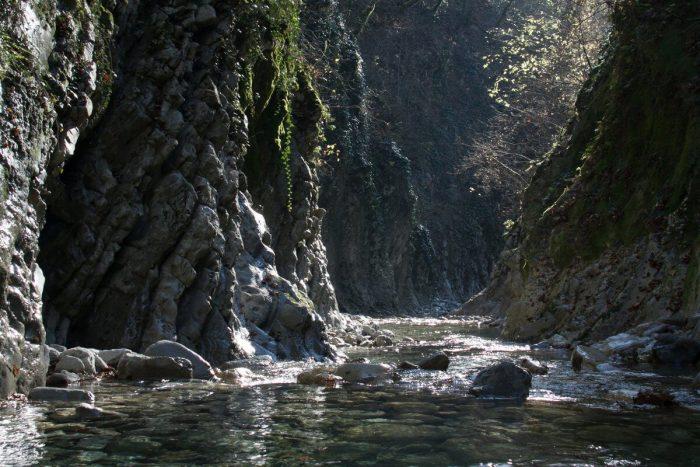 Mamedovo-uschele-700x467