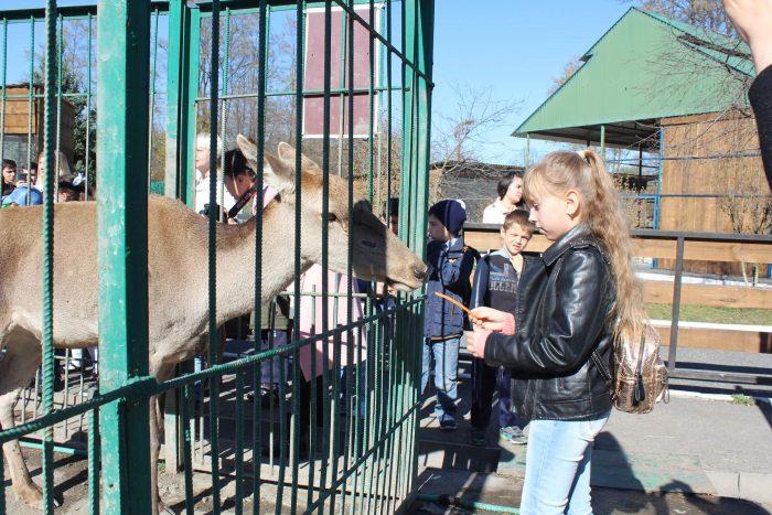 Vladikavkazskiy-zoopark-700x467