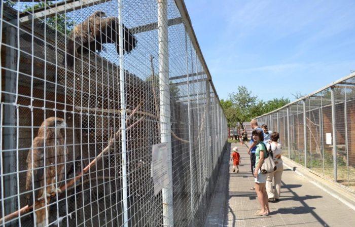 Zoopark-TGU-imeni-G.-R.-Derzhavina-700x448